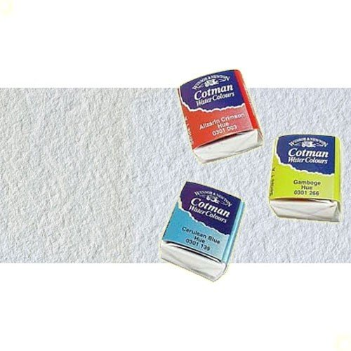 Acuarela Cotman Winsor & Newton 1/2 godet color blanco de China