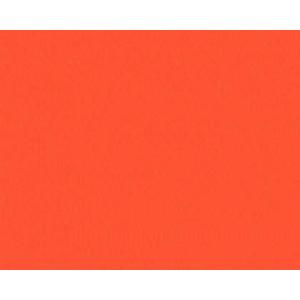Cartulina Guarro Rojo Fluo 50x65 cm., 235 gr.