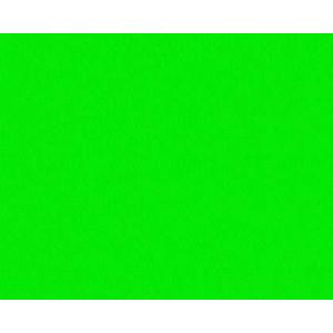 Cartulina Guarro Verde Fluo 50x65 cm., 235 gr.