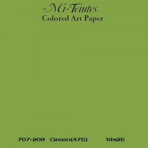 Mi-teintes Canson Verde Manzana, 160 gr., 50x65 cm.