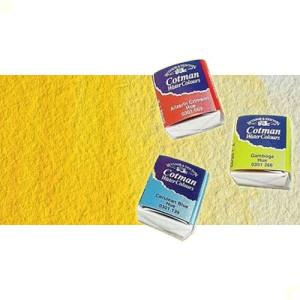 Acuarela Cotman Winsor & Newton 1/2 godet color amarillo de cadmio oscuro