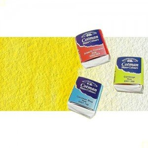 totenart-acuarela-cotman-winsor-newton-amarillo-limon-tono-medio-godet