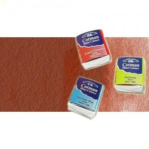Acuarela Cotman Winsor & Newton 1/2 godet color rojo claro