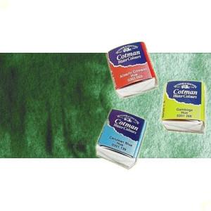 totenart-acuarela-cotman-winsor-newton-verde-oscuro-hooker-medio-godet