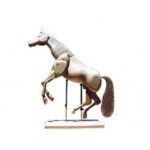 totenart-caballo-articulado-30-cm