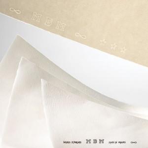 totenart-Hoja Ingres Arches MBM 130  gr, 50X65 cm