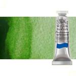 Acuarela Artist Winsor & Newton color verde vejiga permanente (5 ml)