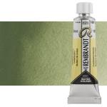 Acuarela Rembrandt Color Verde Óxido de Cromo 668 (20 ml)