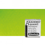 Acuarela Schmincke Akademie, Verde Mayo 552, 1/2 Godet.