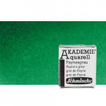Acuarela Schmincke Akademie, Verde Permanente 553, 1/2 Godet.