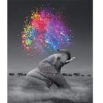 """Pintar por números kit cuadro """"Elefante y explosión de colores"""", 40x50cm, Figured'Art"""