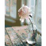 "Pintar por números kit cuadro ""Flor blanca"", 40x50cm, Figured'Art"