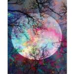 """Pintar por números kit cuadro """"Luna llena con reflejos"""", 40x50cm, Figured'Art"""