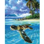 "Pintar por números kit cuadro ""Tortuga relajada"", 40x50cm, Figured'Art"