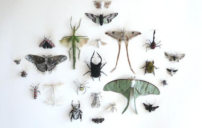insectos hechos con pelo humano, obra de Adrienne Antonson