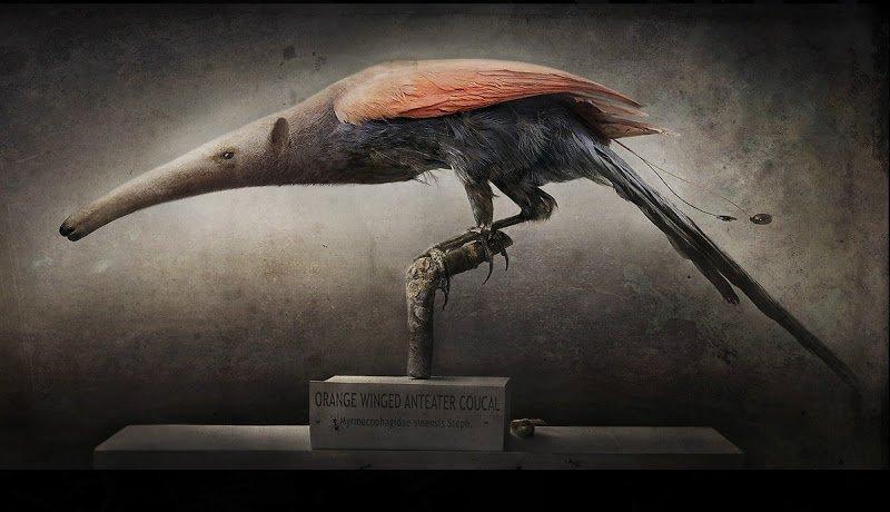 'Animales compuestos', del fotógrafo sueco Fredrik Ödman
