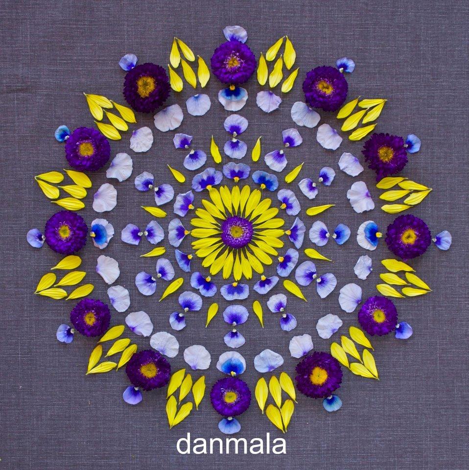Mandalas De Flores El Arte Fotografico De Kathy Klein Noticias De