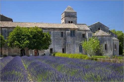 van-gogh-noticias-totenart-01-Saint-Rémy-de-Provence