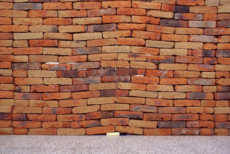 totenart-muro-impacto-un-libro