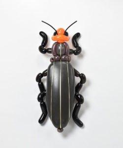 totenart-escarabajo