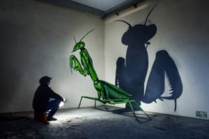 totenart-odeith-insectos