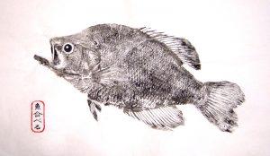 gyotaku-imprimir-peces-noticias-totenart
