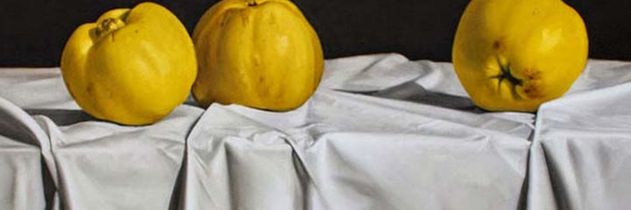 Cómo pintar manteles en bodegones, vídeo