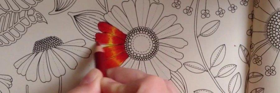 Cómo utilizar los lápices Polychromos